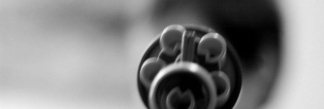 Armas de fogo matam caca vez mais